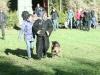 img_0692-fotos-door-nico-ax-helpersexamen-renko-roy-127