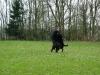 imgp7676-oefenen-met-phv-beilen-17-maart-2012-56